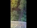 Beautiful jump, bridge 35m 20.08.17