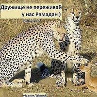 Забир Кабардинец