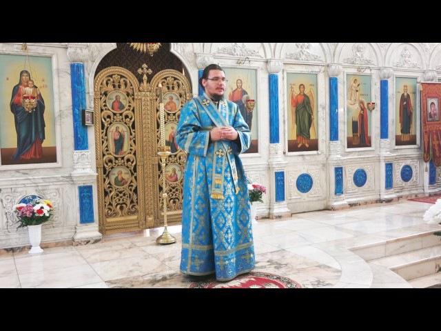 Проповедь иподьякона Владимира Пыжикова в день Введения во храм Пресвятой Богородицы