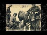 Немецкие солдаты.Войска СС на Западном фронте 1940 год.Уникальная подборка фото.Ч ...