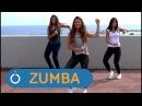 Zumba Bachata a lo loco ZUMBA fitness PASO A PASO