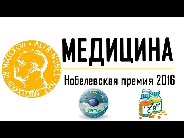 АУТОФАГИЯ. Нобелевская премию по МЕДИЦИНЕ в 2016 году