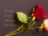 A Time For Us (Romeo _ Juliet) - andy williams
