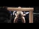 Brian Shaw — 555 lb. world record stone lift — Arnold Strongman Classic 2016