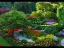 Метью Шехтер, садовод-дизайнер. Нью-Йорк на крыше