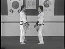 Лучшие техники самообороны из корейских боевых искусств