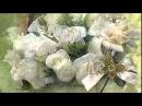 Букет из белых роз Ирина Круг и Виктор Королёв HD