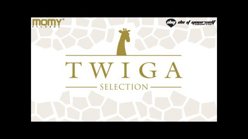 TWIGA SELECTION [Official minimix]
