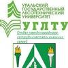 Международный отдел УГЛТУ