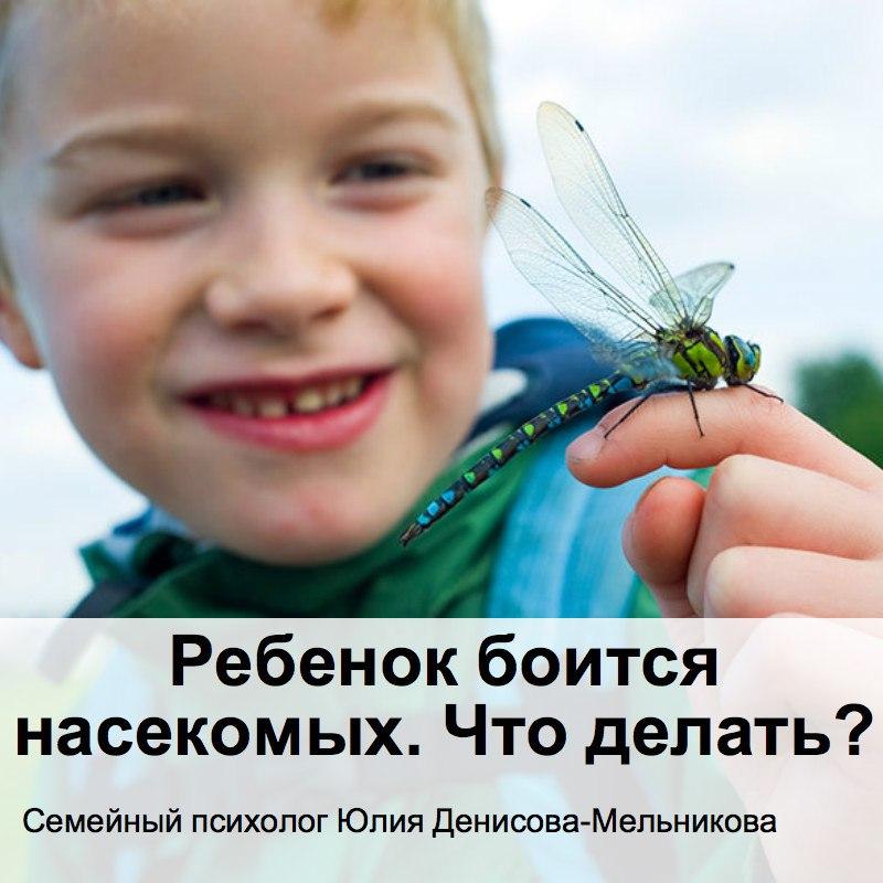 ребенок боится насекомых, ребенок боится насекомых что делать, ребенок боится насекомых до истерики,