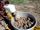Самодельная картофелесажалка на минитракторе