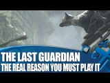 PS4 - The Last Guardian (The Last Guardian &amp ICO &amp Shadow of the Colossus Retrospective)