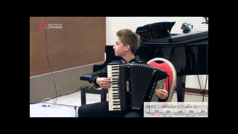 Jevgenij Derbenko: Rock-toccata - Martin Kutnar, harmonika / Bistrički ZVUKOLIK 2014.