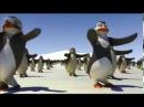 Физминутка-минутка 40: пингвинья