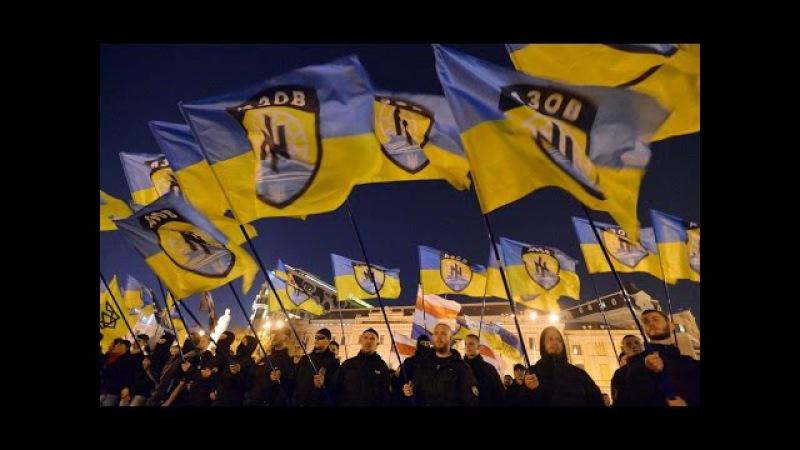 Навіщо «Азов» створив політичну партію   «Ваша Свобода»   «Ваша Свобода»