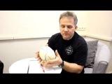 Эпилепсия - лечение остеопатией - метод Фёдора Гитя