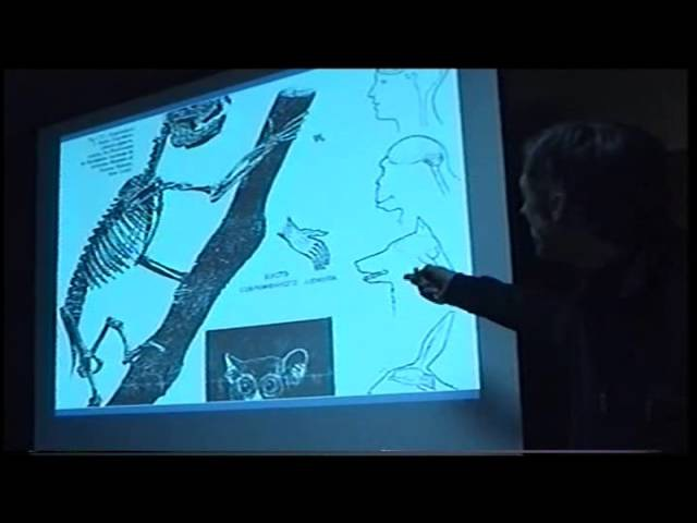 Белов А.И. - Загадки антропологии. Переломный период в развитии человеческой культуры - 2007