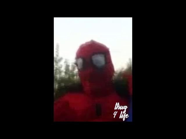 настоящий человек паук