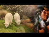 Джеймс ласт-одинокий пастух-флейта  очень классная мелодия