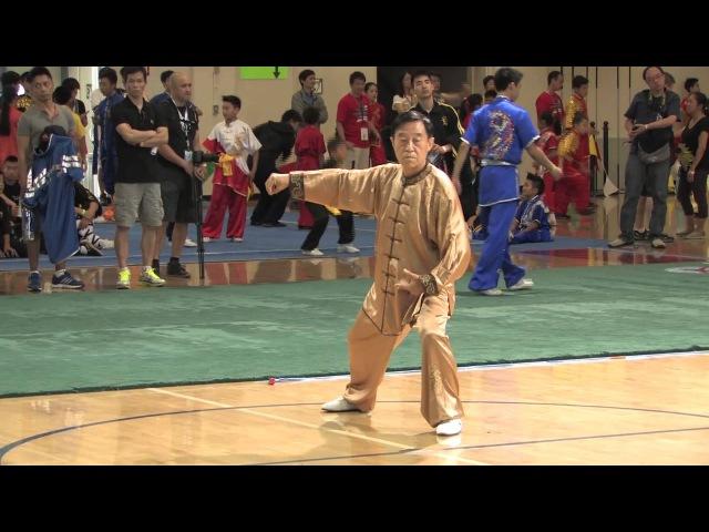 Grand Master Chen Zheng Lei Demostrates Chen Style Tai Chi 陈正雷大师表演