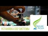 Обзор установки СО2 для аквариума от Nature Aqua