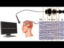 This 'Brain-to-Text' system can turn your Thoughts into Text