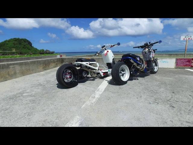 Honda Ruckus Ride