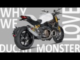 WHY WE LOVE DUCATI MONSTER?