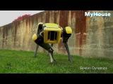 The New SpotMini (Новый робот SpotMini) Прикольный робот!!!