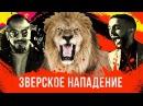 Лев напал на Натана. Гусейн Гасанов снова в деле. Проект Подстава. Выпуск 3