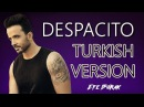 Despacito - Luis Fonsi / Türkçe Versiyonu ( Cover by Efe Burak )