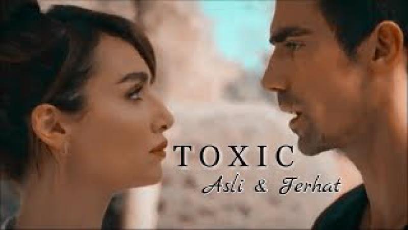 Asli Ferhat | Toxic