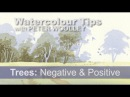 Watercolour Tip from PETER WOOLLEY Trees - Negative and Positive