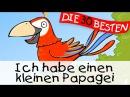 Ich habe einen kleinen Papagei Partylieder zum Mitsingen Kinderlieder