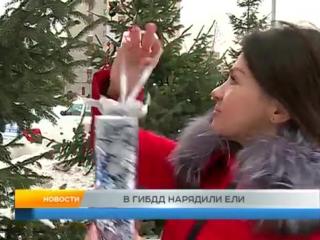 В ГИБДД нарядили ели. Рыбинск
