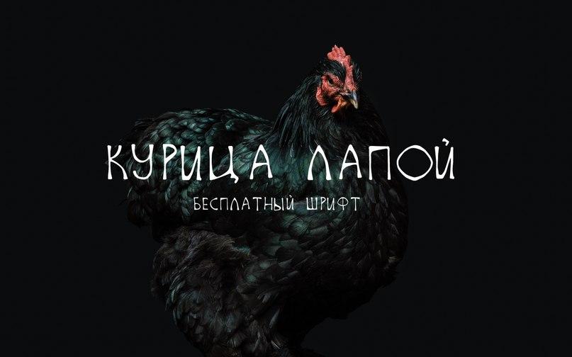 Kurica Lapoi шрифт скачать бесплатно