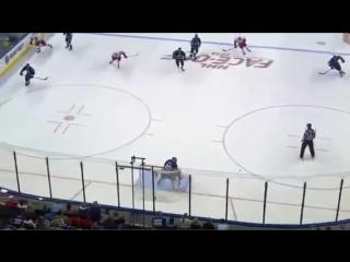 Самый нелепый гол в хоккее