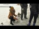 Женщина спасла собаку, из которой хотели сделать шашлык