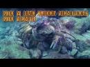 Отдых на Черном море. Часть первая - подводная братва.