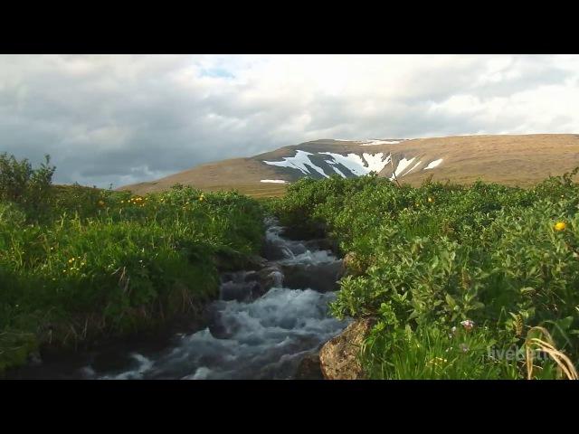 Звук тихий спокойный речной воды в глубокий сон звуки природы