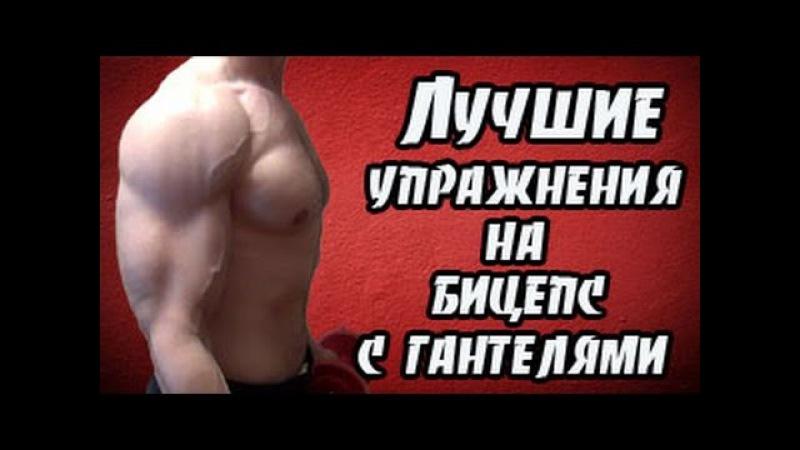 Упражнения на бицепс с гантелями eghf;ytybz yf ,bwtgc c ufyntkzvb