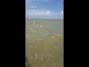Ейск Азовское море