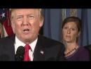 Выступление Трампа осталось незамеченным, и всё из-за бровей этой женщины