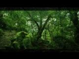 Yaki Da - Deep in the Jungle (monte X 2)