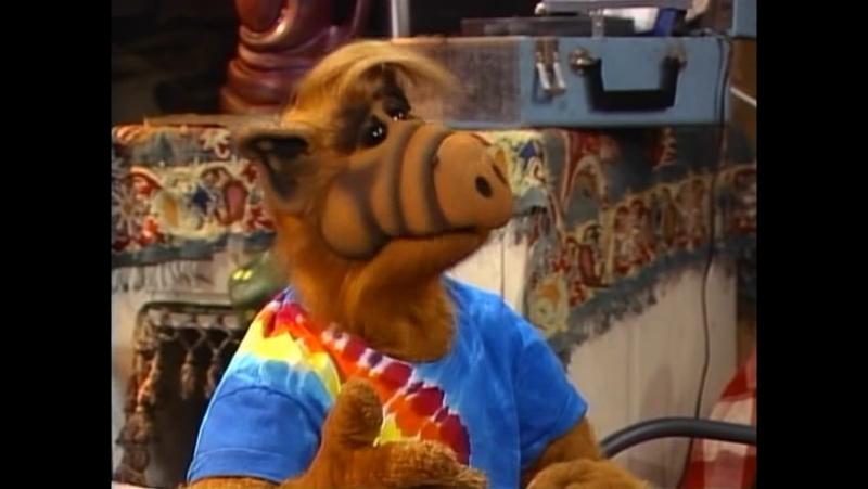 Alf Quote Season 4 Episode 8 _Альф и Вилли