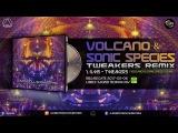 G.M.S - Tweakers (Volcano &amp Sonic Species Remix)