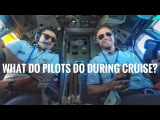What does pilots do during cruising?