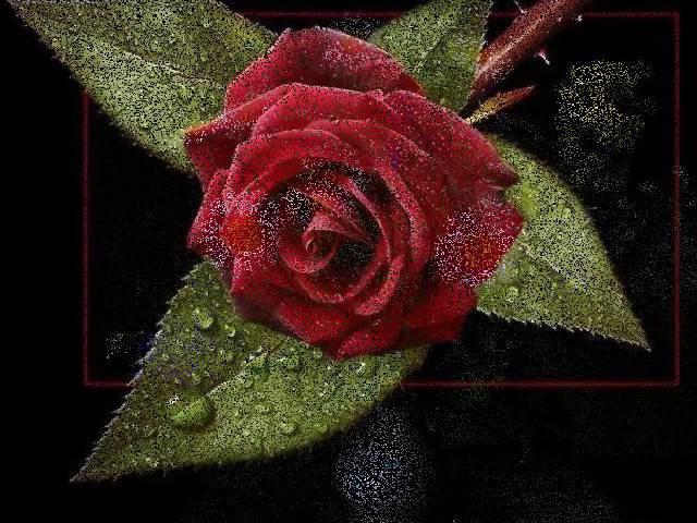 ☾★☾★ '' MEDİNE YOLU '' ☾★☾★ senden başka sevemem sevememki seni düşüne düşüne akılmı kaldı sana ku