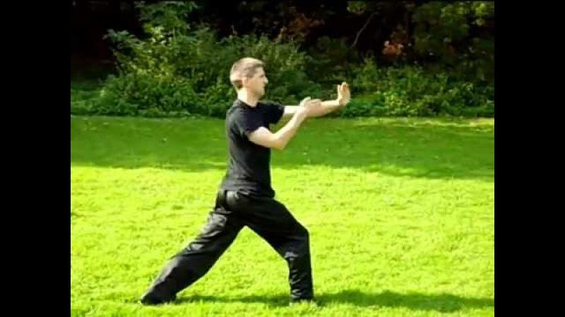 Mui Far Low Kuen - M-Kung-Fu - Seven Star Mantis Kung Fu