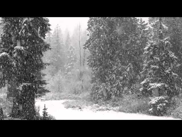 Fast Falling Snow 1080p Hd Without Music - 4 hours